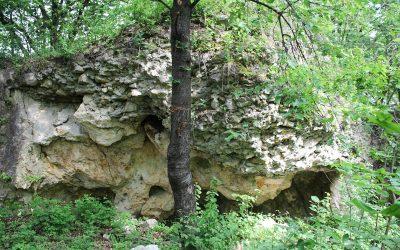 Csorba kő